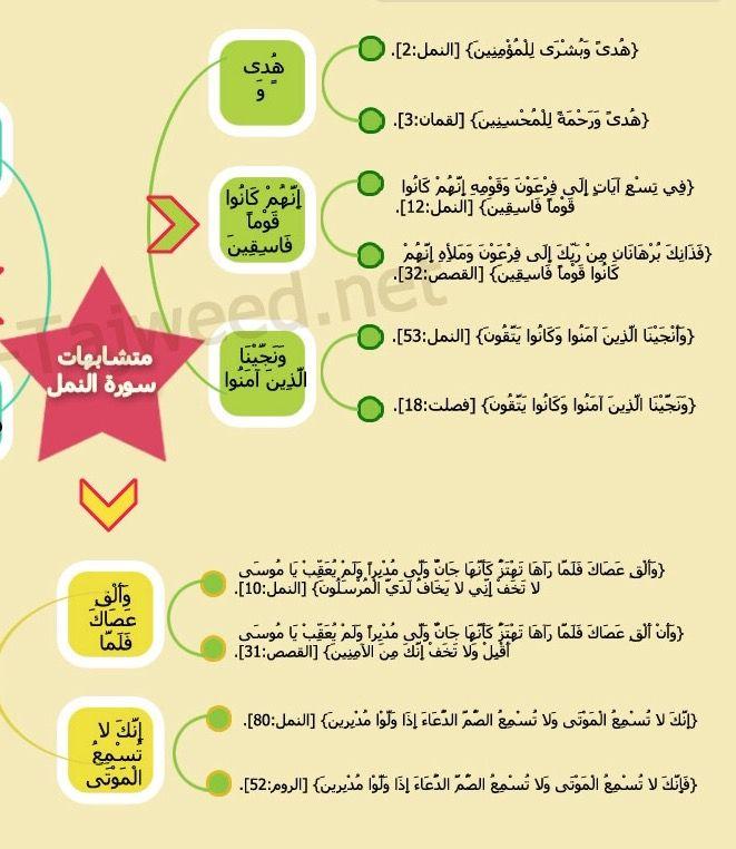 متشابهات سورة النمل ١ Quran I Am Awesome Forgiveness