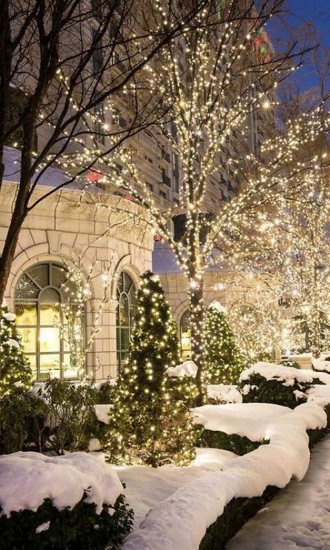 Christmas Outdoor Lights, Holiday Lights, Old Fashioned Christmas Lights,  Luxury Christmas Decor, - Pin By Ana-Paula Bridals On Winter Wonderland Pinterest