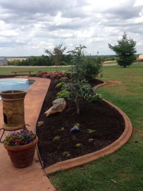 Flower bed around a pool | Plants, Backyard, Flower beds on