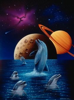 Solar Dolphins Dolphin Art Dolphin Painting Dolphins