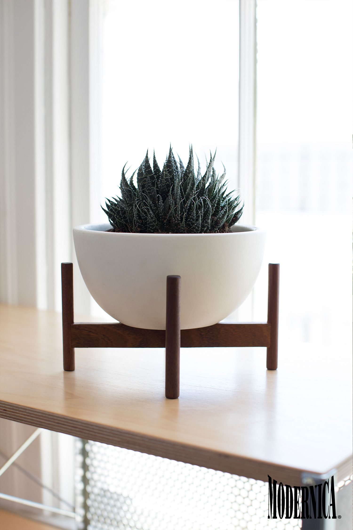 Modernica Case Study Table Top Bowl w Stand