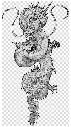 16 dragon sleeve drawing