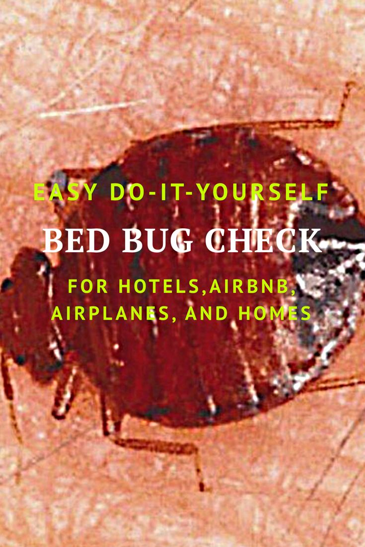 Over last 10 yrs reported bed bug infestations have been
