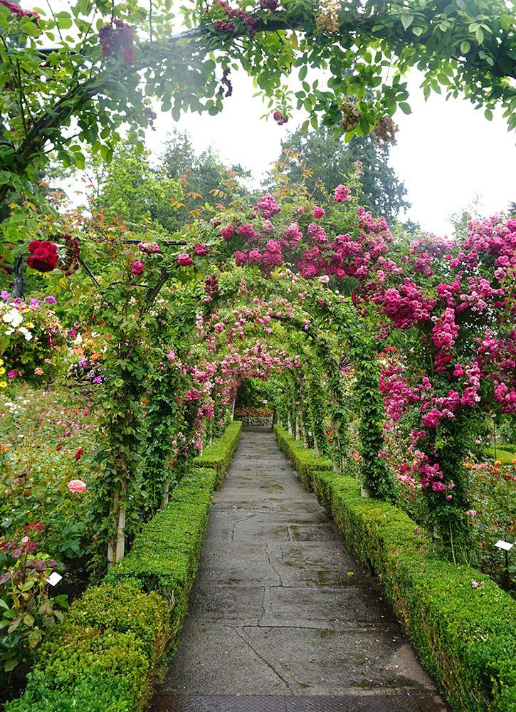 Vancouver Island's Spectacular Butchart Gardens #butchartgardens