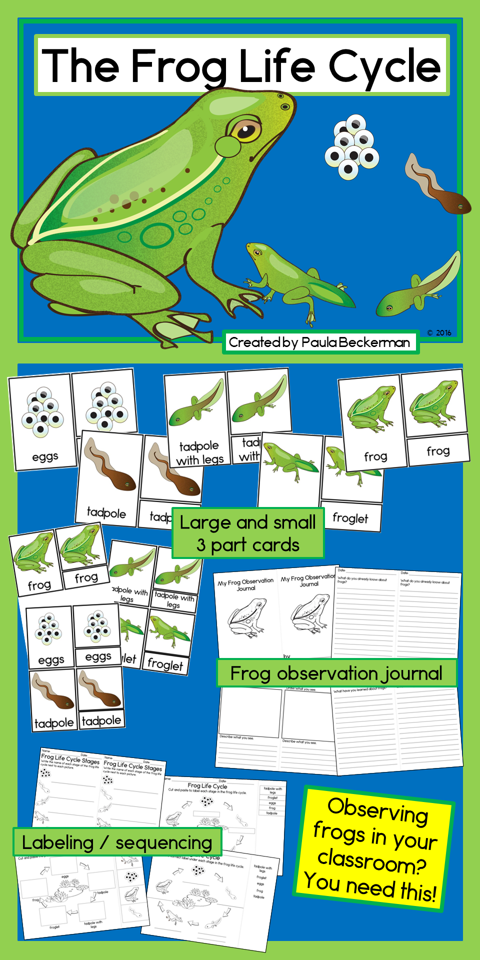 Frog Life Cycle Activities With 3 Part Cards Journal And