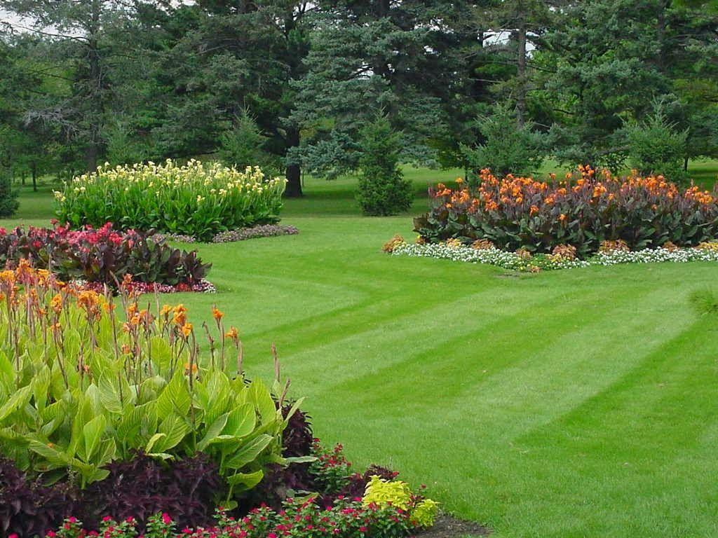 Interesting-Garden-Ideas: Latest Landscaping trends idea for Garden