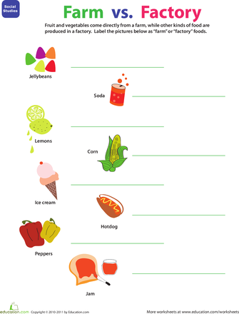 Worksheets Where Food Comes From Farm Or Factory Kindergarten Farm Theme Food Lessons Farm Lessons