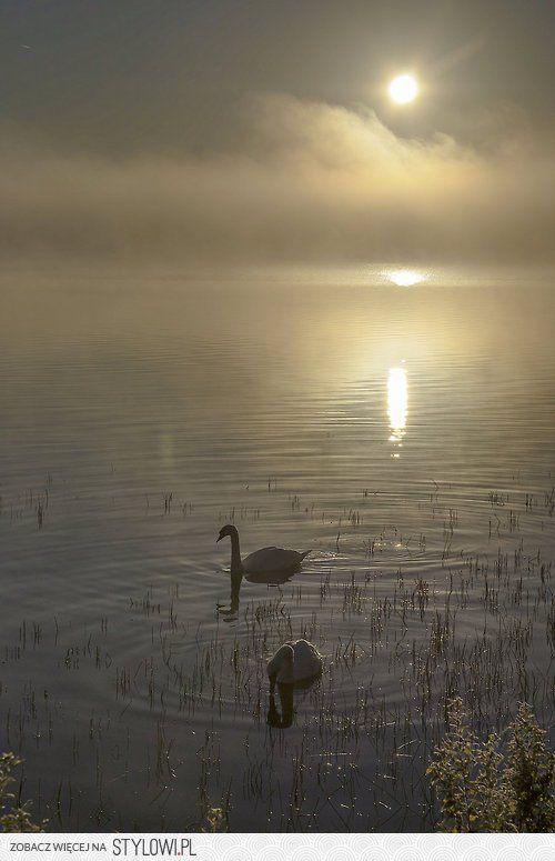 Sublime!   Beautiful nature