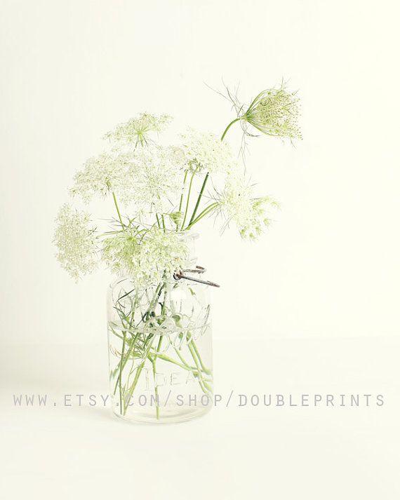 Fine Art Photograph, Queen Anne's Lace Photograph, Floral Photography