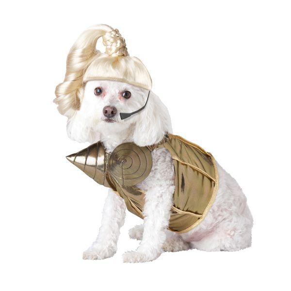 Pop Queen Dog Costume Dog Halloween Costumes Dog Costumes Pet