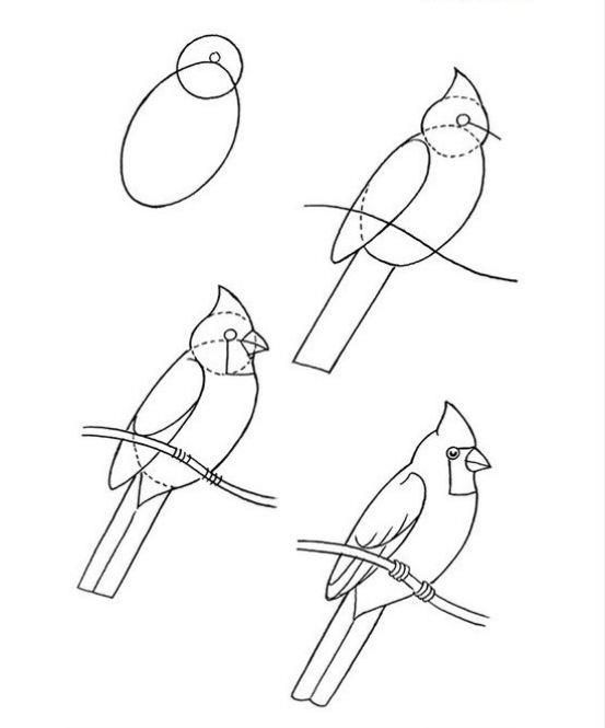 Pin By Angelica Work On Arts And Crafts Bird Drawings Drawings