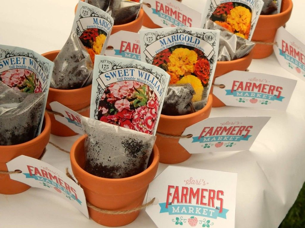 project nursery terra cotta pots with soil and seeds for farmers market party favors. beautiful ideas. Home Design Ideas