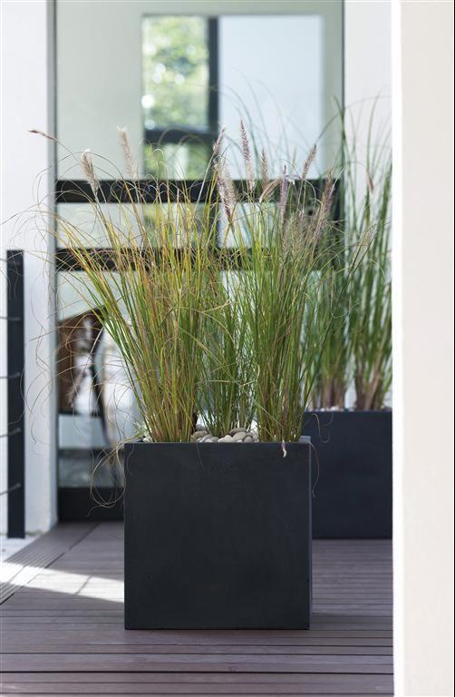 Les Produits Les Conseils Et Les Idees Pour Le Bricolage La Decoration Et Le Jardin Leroy Merl Terrasse Jardin Jardin Moderne Plante Artificielle Exterieur