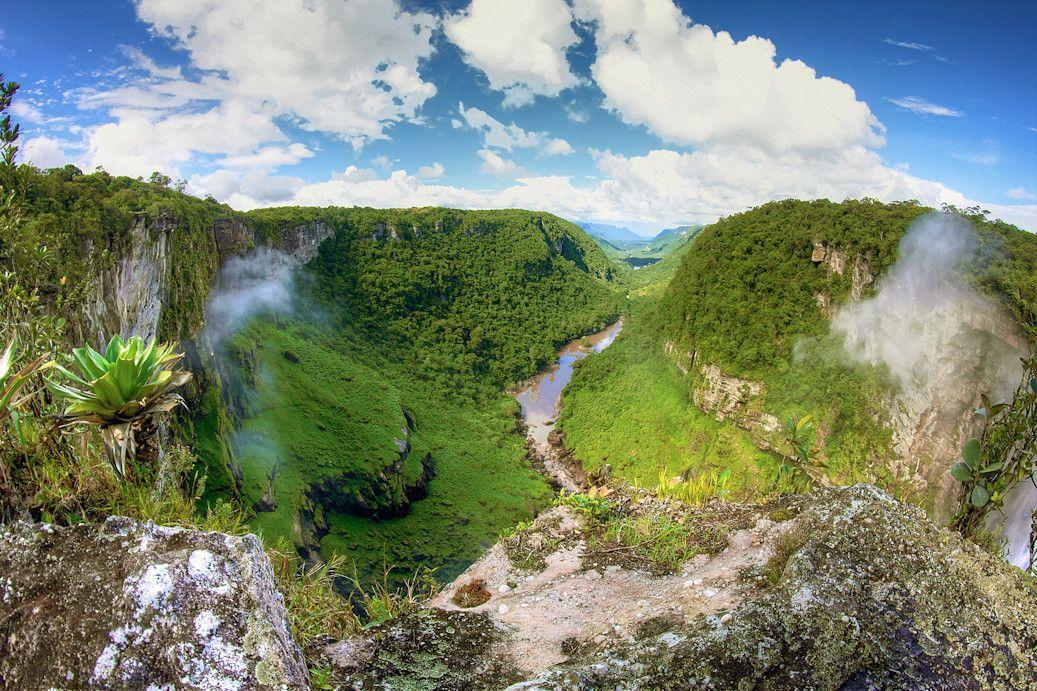Les forêts tropicales de l'Amazonie française : Les 100 plus beaux paysages de France - Linternaute.com Week-end