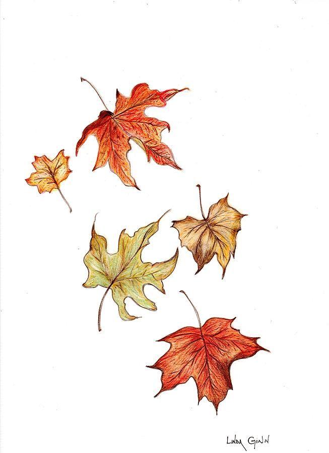 Dark Room Drawing: Leaf Drawing, Fall Leaves Drawing