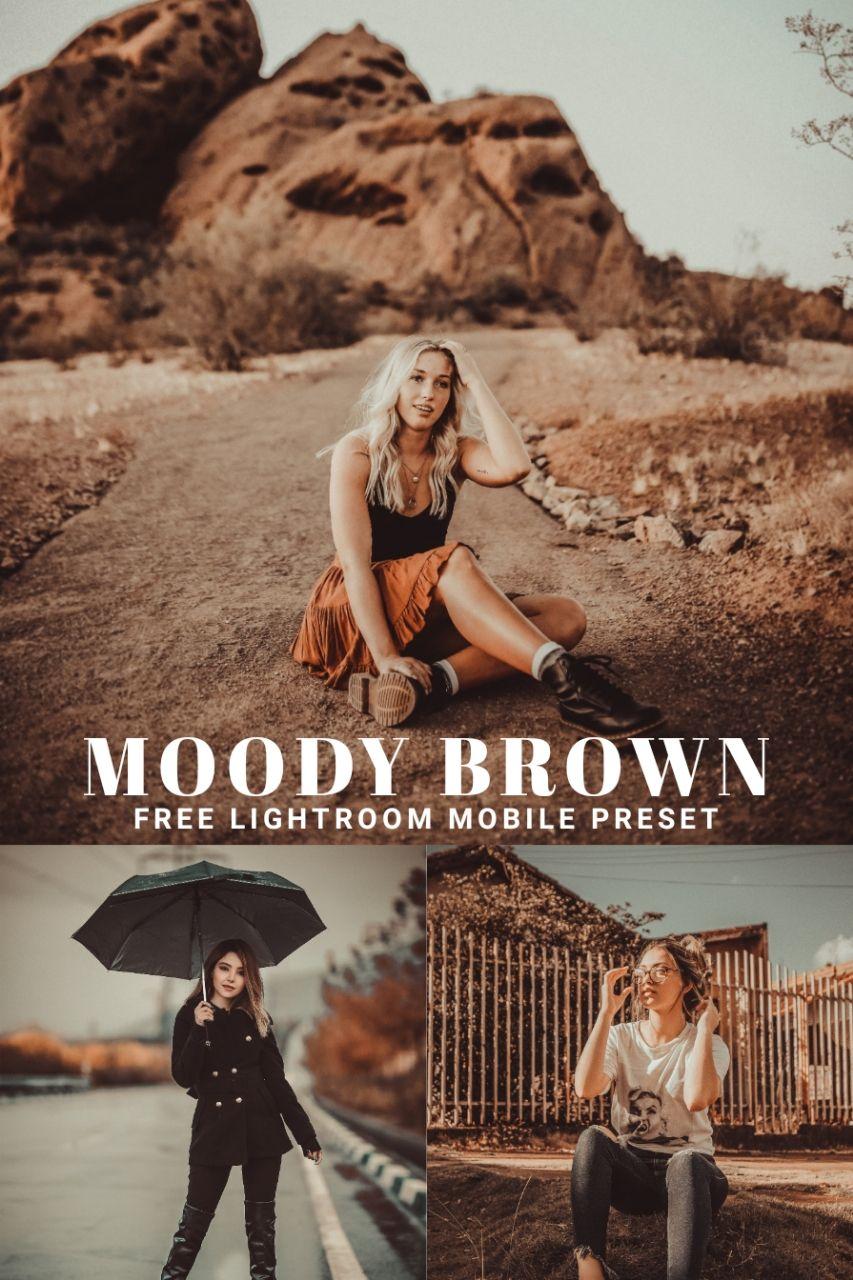 Free Moody Brown Lightroom Mobile Preset Free Lightroom Preset Free Lightroom Presets Portraits Lightroom Presets Free Photoshop Presets Free