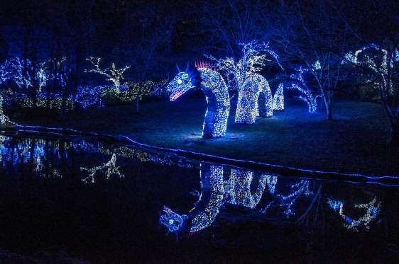 ffa50efb42bf5cb3149a264bc7bf64e5 - Garvan Gardens Hot Springs Christmas Lights