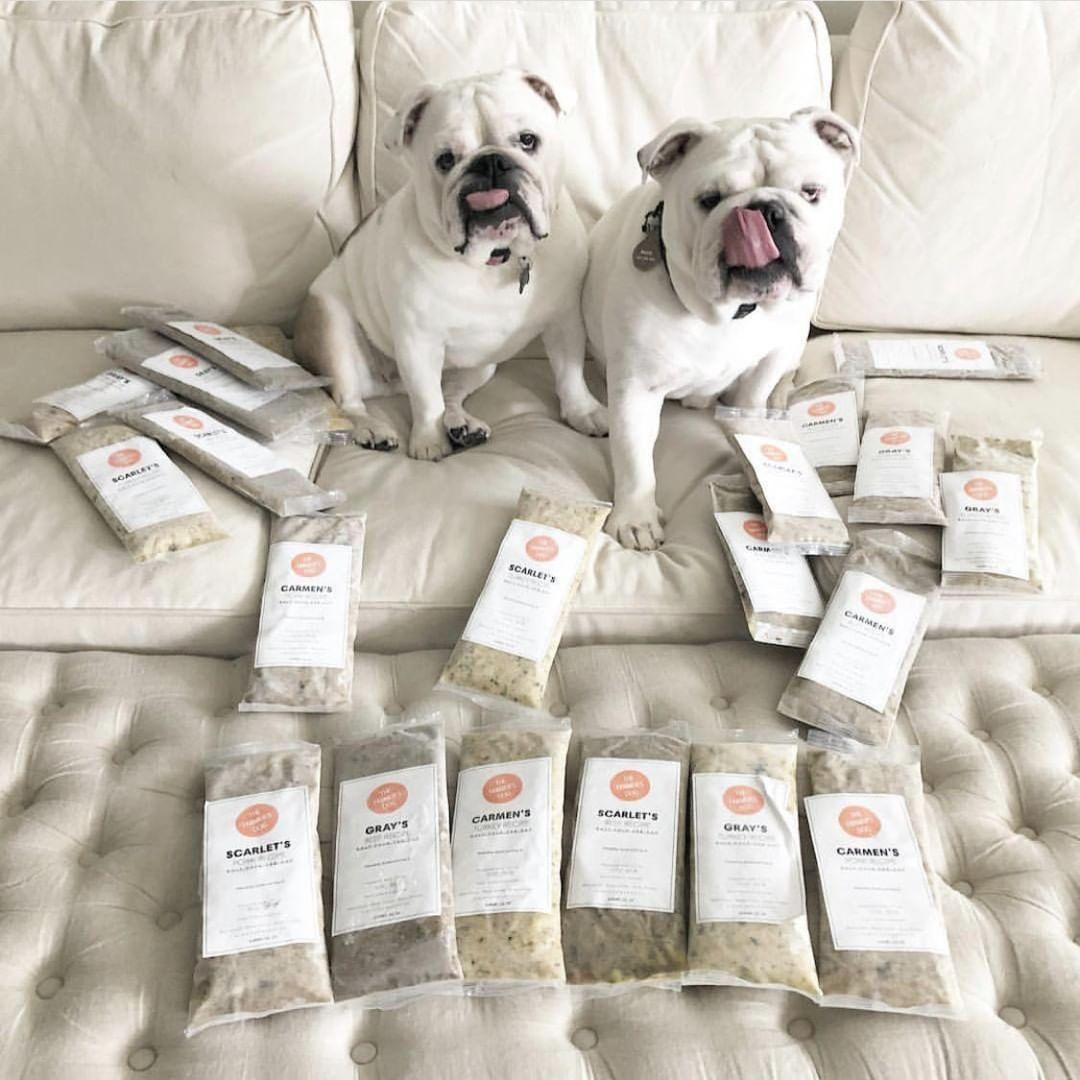 Dog food for English Bulldogs Dogs, Homemade dog, Dog