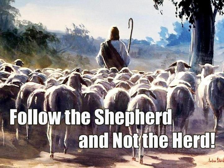 "John 10:27 ""My sheep hear My voice, and I know them, and they follow Me"""