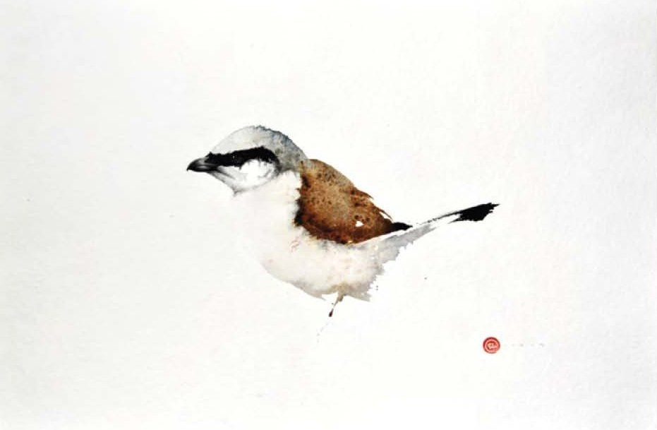 Karl Martens, Shrike (Unframed) | Cricket Fine Art