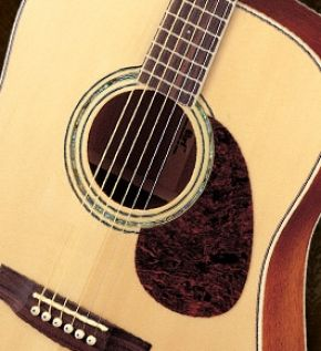 Jeff Berlin S Asia Clinic Tour Guitar Cort Guitars Guitar Player
