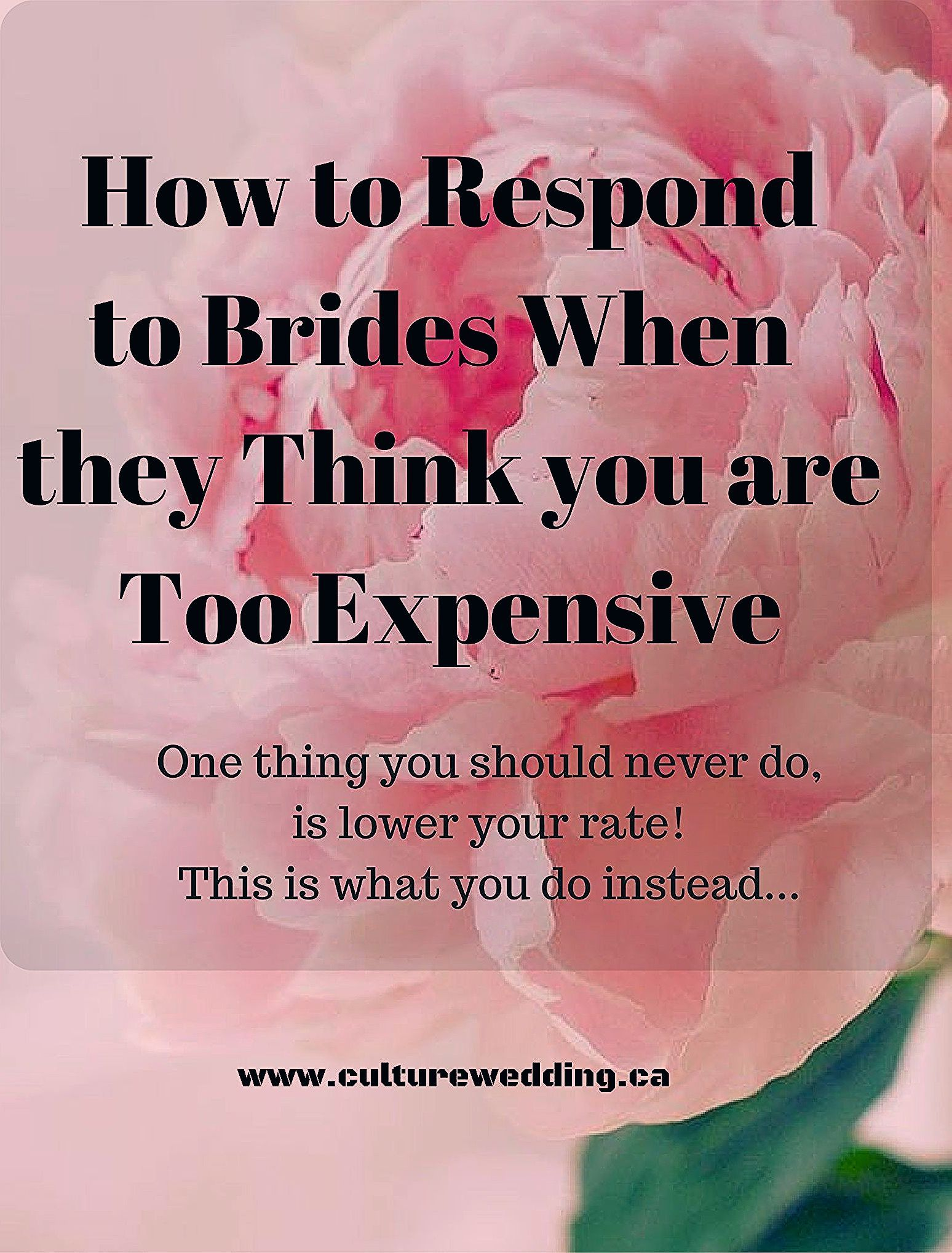 Photo of How to respond when brides think you are too expensive.