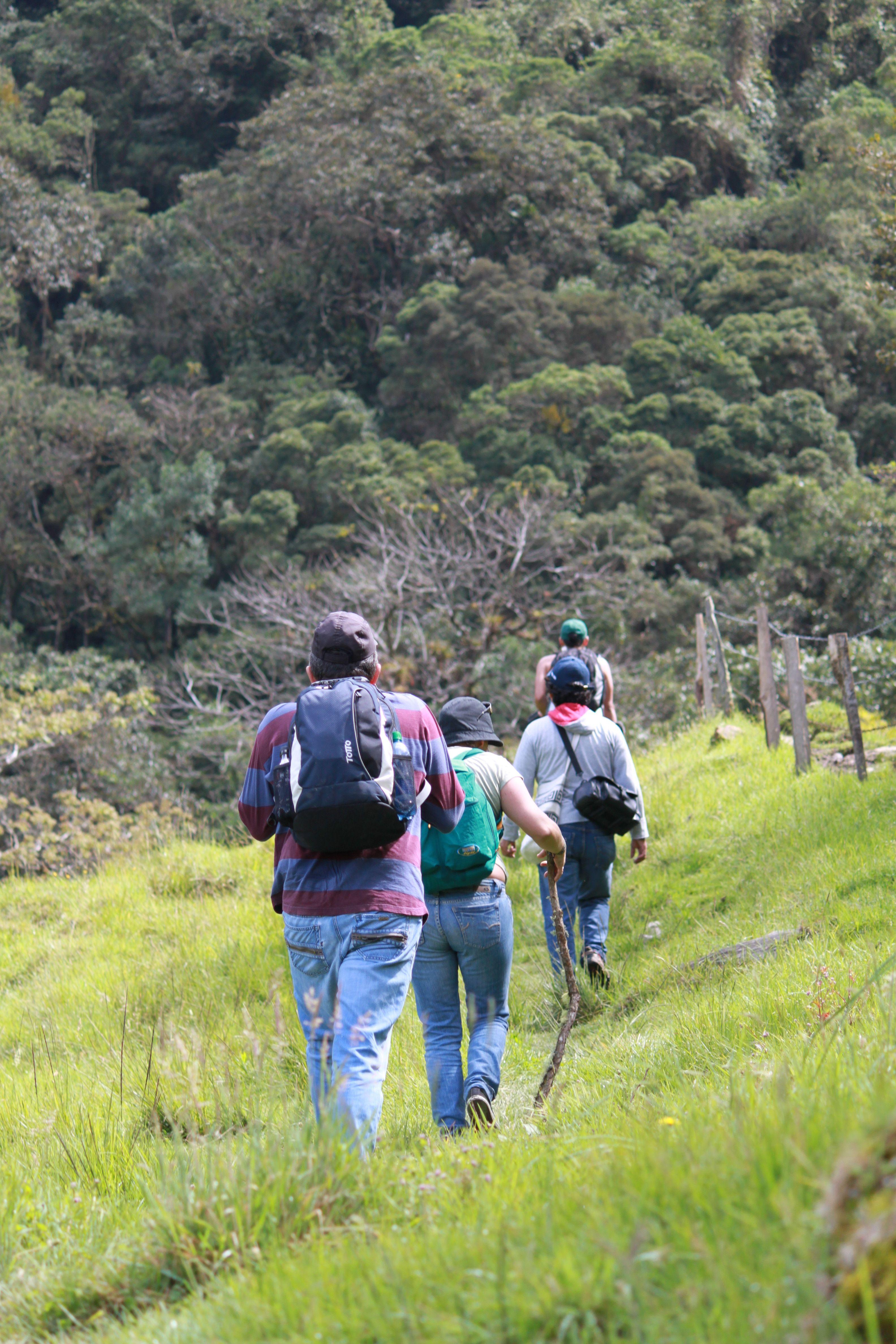 El camino comienza saliendo desde Cocora, atravesando potreros por un camino de herradura hasta donde se inicia el bosque.