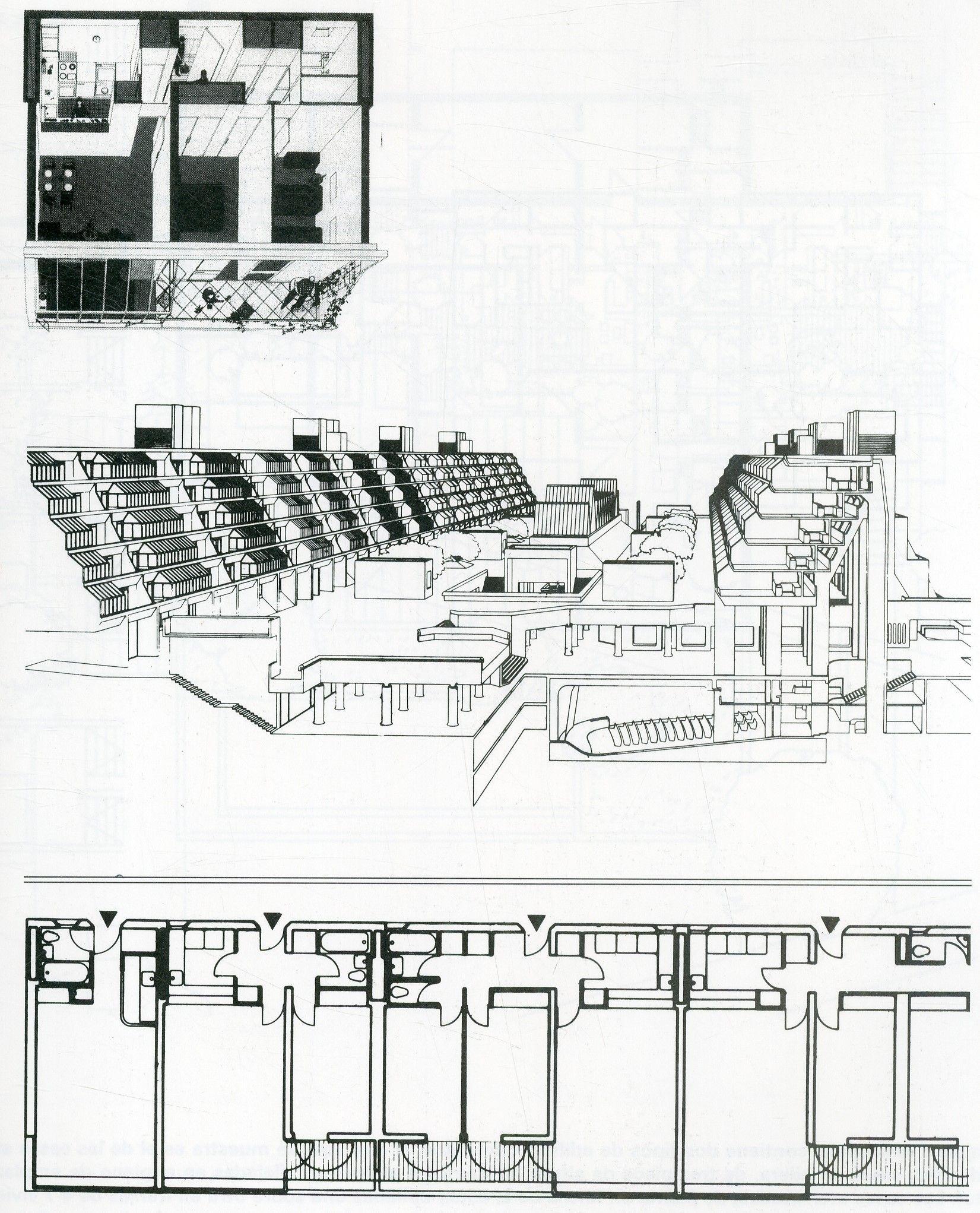 Pàgina 125; SCHNEIDER, Frederike Atlas De Plantas. 1969