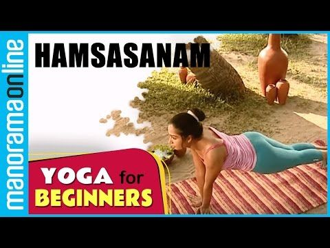 youtube  yoga for beginners yoga back muscles