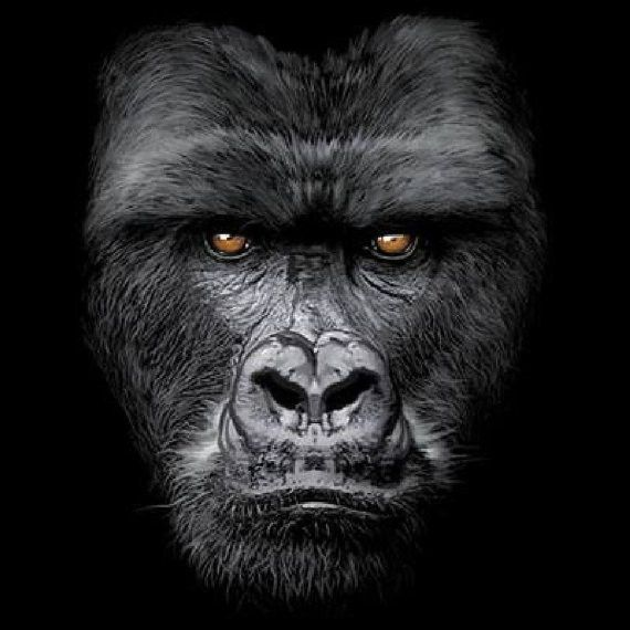 Majestic Gorilla Face Design on UNISEX T Shirt Shirt Color: BLACK ONLY Choose Size: M L XL 2XL 3XL Graphic is on the FRONT of the shirt. Please be sure to check our size chart before purchasing. Mater