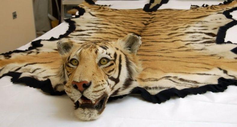 Tiger Skin Rug For