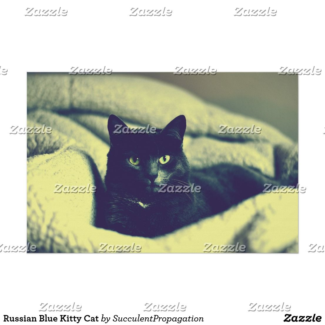 Russian Blue Kitty Cat wall art poster for your home, office, dorm ...