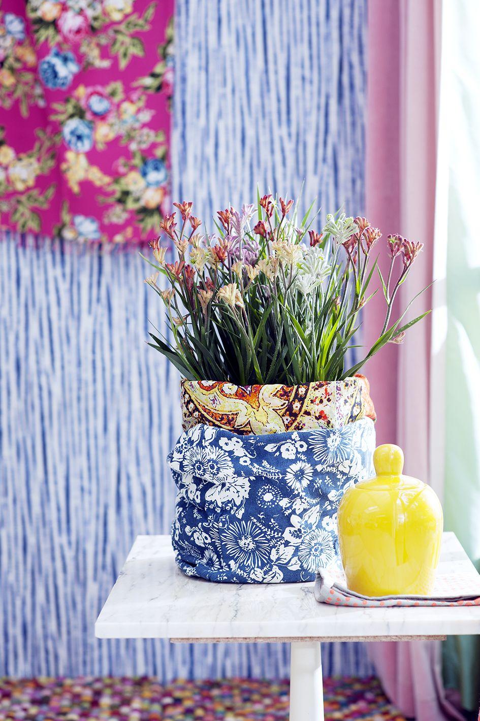 De Bluhende Zimmerpflanzen Pinterest Bluhende Zimmerpflanzen
