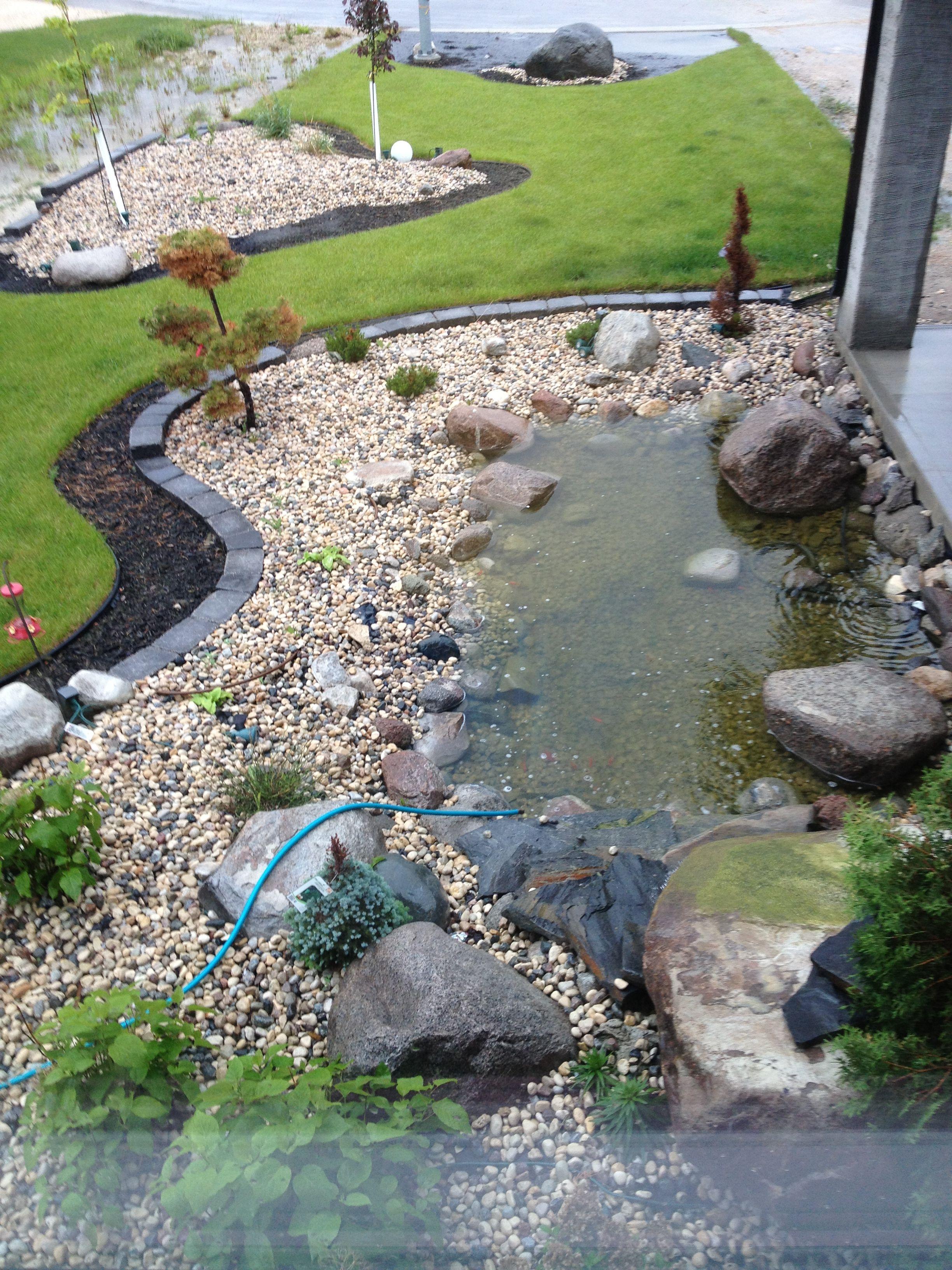 View from living room | Ponds backyard, Garden stream ...