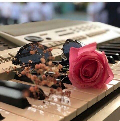 Pin By Gergana On Gullerim Beautiful Roses Beautiful Flowers Love Rose