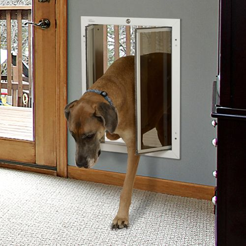 Plexidor Wall Series Can Be Installed Into Stud Brick Block Or Cement Exterior Walls Up To 12 Inches Thick Dog Spaces Dog Door Dog Rooms