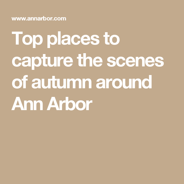 Arbor Place Dr: Top Places To Capture The Scenes Of Autumn Around Ann