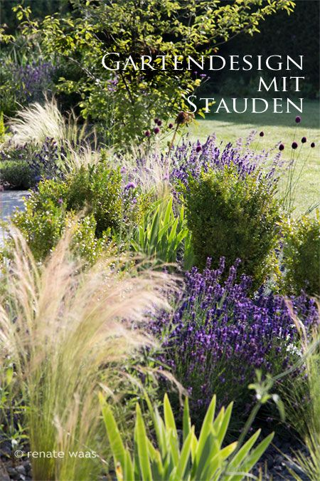 Gartenplanung, Gartendesign und Gartengestaltung Pflanzplanung - mediterraner garten anlegen