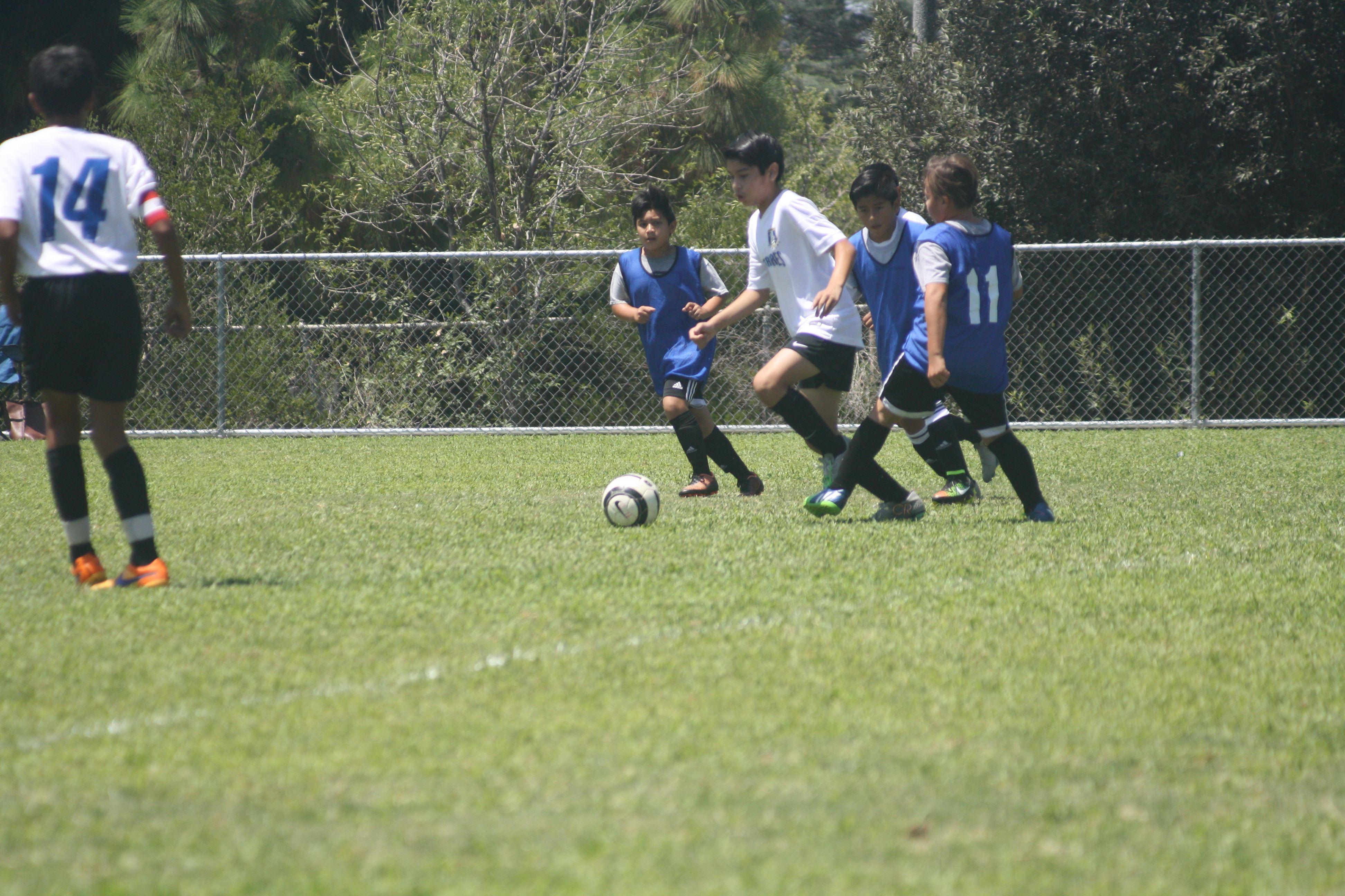 Cristian Soccer Club Soccer League Youth Soccer