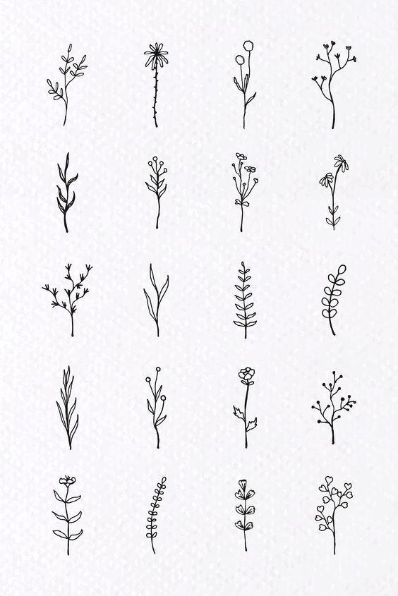 Laden Sie den Premium-Vektor Tropical plant element vector set 935721 doodles #flowertattoos – Blumentattoos Blumentattoos #besttattooideas – beste Tattoo-Ideen zum Selbermachen