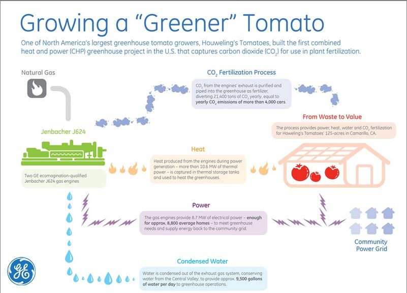 "How are we using tech to grow a ""greener"" tomato?"