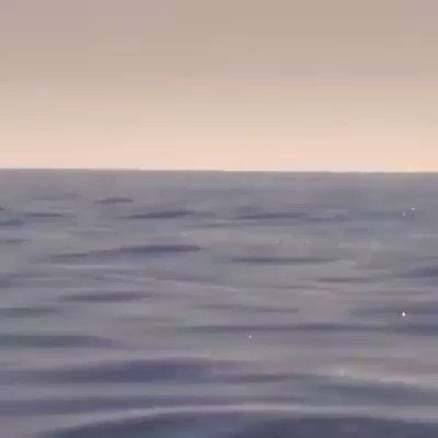 """Physics & Astronomy Zone on Twitter: """"The dance of the Manta Rays😮😍… """""""