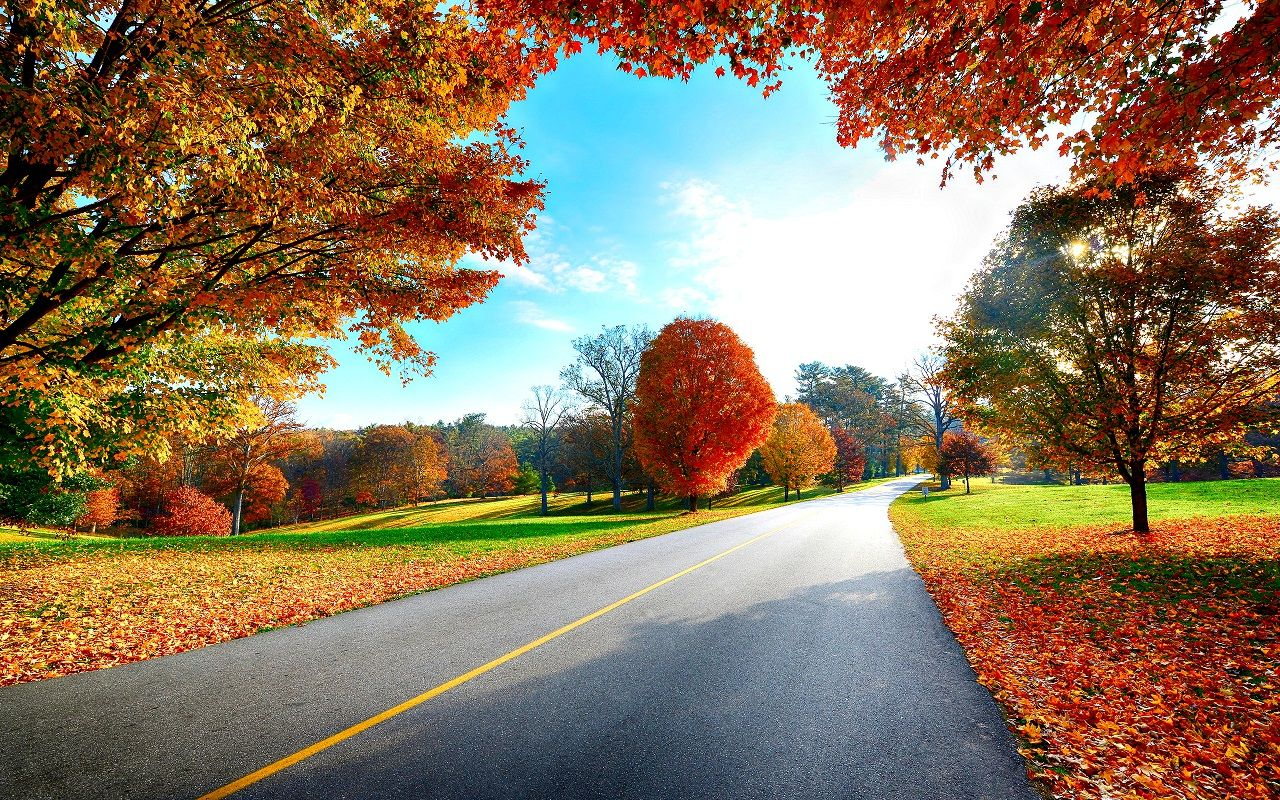 Autumn Beautiful Morning 1280x800 Scenery Wallpaper Landscape Wallpaper Hd Nature Wallpapers