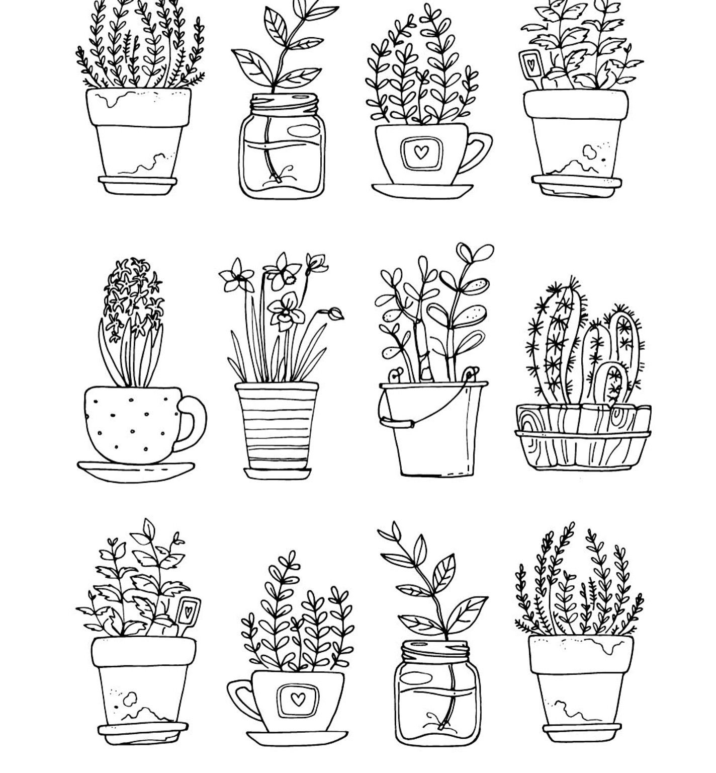 Potted Plants With Images Plant Doodle Botanical Line Drawing