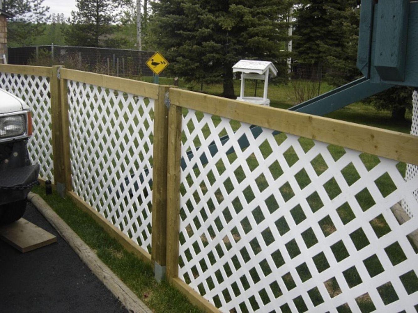 60 Cheap DIY Privacy Fence Ideas   Diy privacy fence, Privacy fences ...