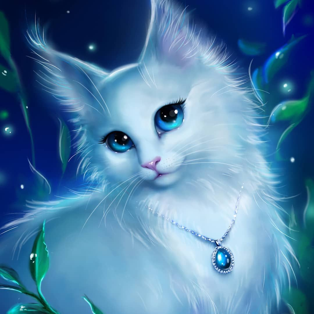 Amazing Style 100likes Nofilter Bestoftheday 50likes Instacool Instafollow Swag Cat Wallpaper Cute Cat Wallpaper Cute Animal Drawings Kawaii