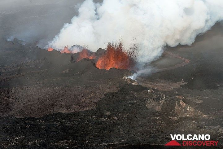 Lava fountains from the main vents, the lava flow and steam plume. (Photo: Tom Pfeiffer)