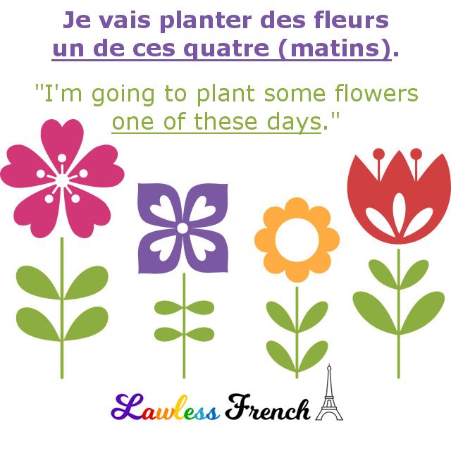 239 Dialogues En Francais French Conversations Un De Ces Quatre Matins Aprender Frances Unas Francesas