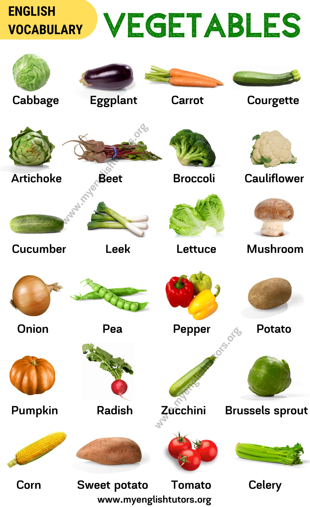 List of Vegetables Popular Vegetables Names with the