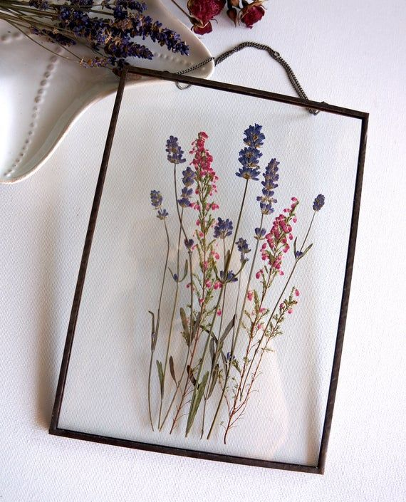 Photo of Pressed lavender bouquet in glass frame Handmade wall hanging soldered glass frame on a chain with lavender and pink erica. Framed bouquet